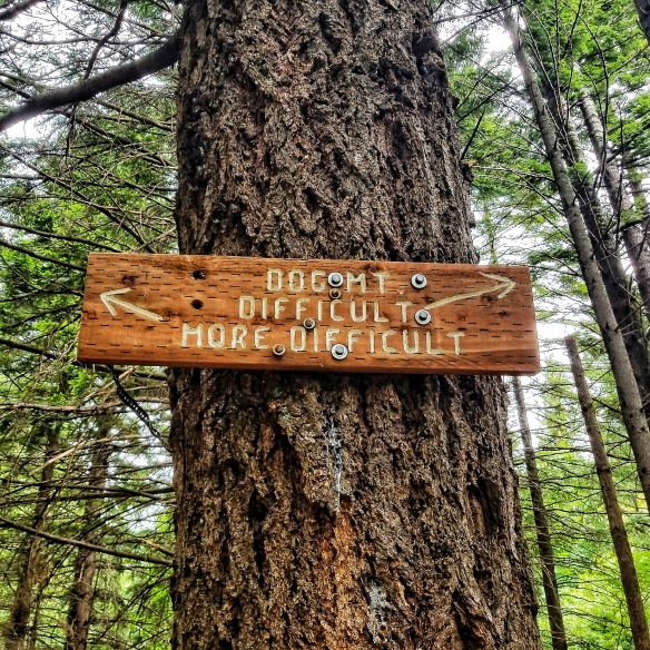 Dog Mountain Trail Signage